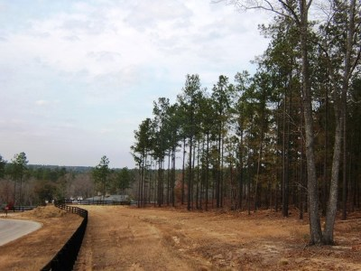 Aiken County Residential Lots & Land For Sale: Lt 65&66 Fox Hollow On The Lake