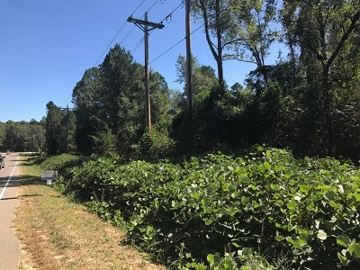 Warrenville Residential Lots & Land For Sale: Lot 83 Pine Log Road