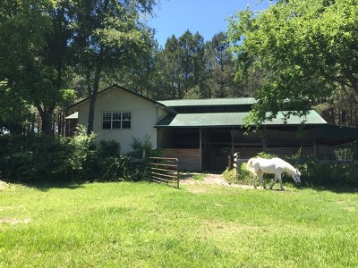 Aiken Single Family Home For Sale: 233 Implement Road