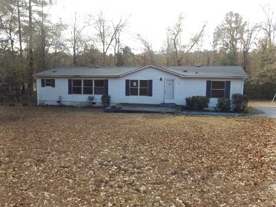 Aiken Single Family Home For Sale: 520 Wrights Mill Road