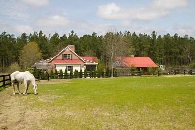 Aiken Single Family Home For Sale: 351 Carillon Court