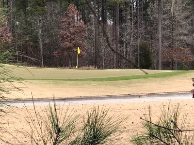 North Augusta Residential Lots & Land For Sale: 137 Captain Johnsons Drive