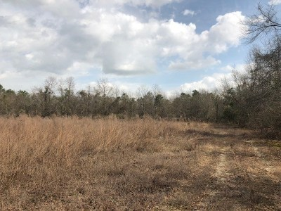 Aiken Residential Lots & Land For Sale: Chime Bell Church Rd