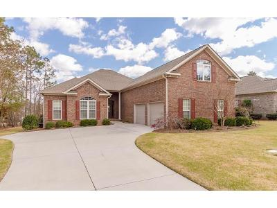 Aiken Single Family Home For Sale: 172 Silver Meadow Court