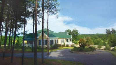 Aiken Single Family Home For Sale: 302 New Holland Road