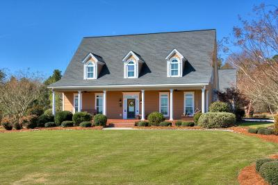 Aiken Single Family Home For Sale: 6055 High Meadow Loop