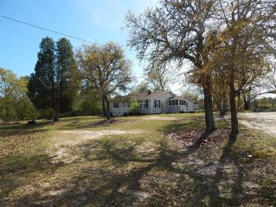 Aiken Single Family Home For Sale: 260 Snipes Pond Road