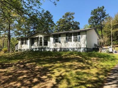 Aiken Single Family Home For Sale: 858 Fire Tower Rd