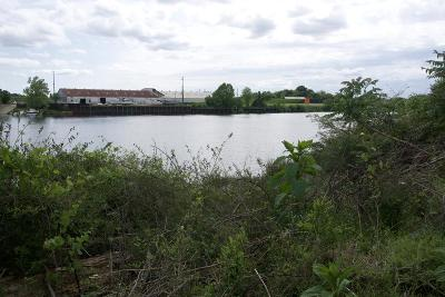 North Augusta Residential Lots & Land For Sale: 194 Altamaha