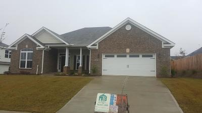 North Augusta Single Family Home For Sale: 343 Bridle Path Rd
