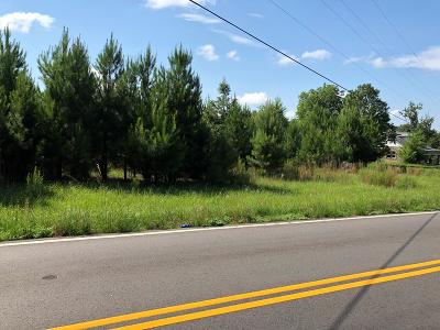 New Ellenton Residential Lots & Land For Sale: Pt 2 Chime Bell Church Rd