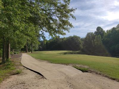 Aiken Residential Lots & Land For Sale: 146 Long Shadow Drive