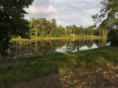 Aiken Residential Lots & Land For Sale: 608 Summer Lakes Drive