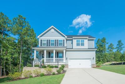 North Augusta Single Family Home For Sale: 1198 Lake Greenwood Drive
