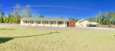 Aiken Commercial For Sale: 4251 A Whiskey Rd