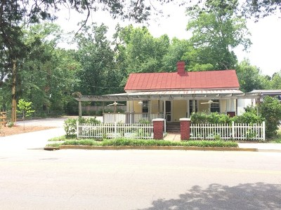 Aiken Commercial For Sale: 233 Chesterfield St