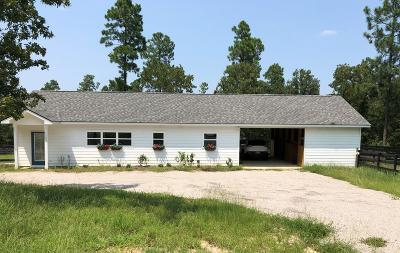 Aiken Single Family Home For Sale: 1203 Quarry Pass