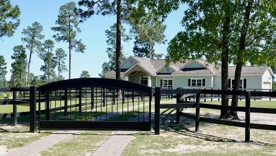 Aiken Single Family Home For Sale: 951 Shell Bluff Dr