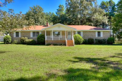 Aiken Single Family Home For Sale: 169 Willow Run Rd