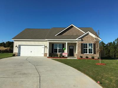 Aiken Single Family Home For Sale: 621 Boone Ct