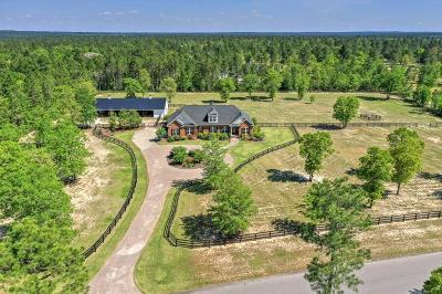 Aiken Single Family Home For Sale: 1080 Quarry Pass