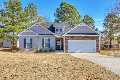 Aiken Single Family Home For Sale: 381 Misty Morning Ct