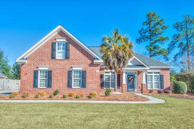 North Augusta Single Family Home For Sale: 136 Millwood Lane