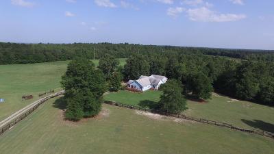 New Ellenton Single Family Home For Sale: 1042 Woodland Drive