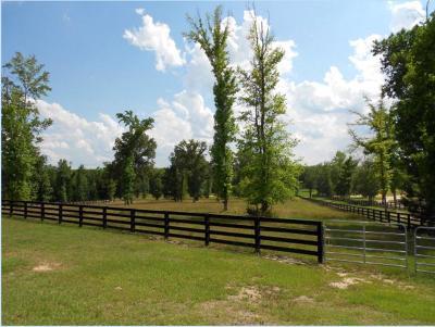 Aiken Residential Lots & Land For Sale: 424 Paloma Lane