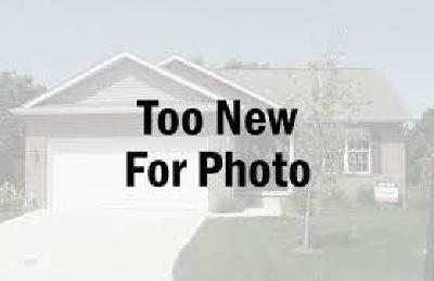 North Augusta Single Family Home For Sale: 439 Bridle Path Rd