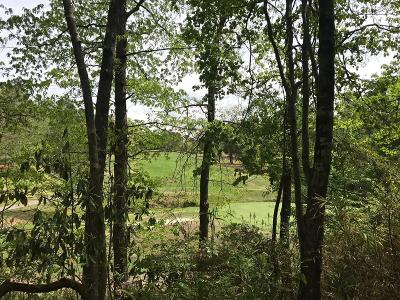Aiken Residential Lots & Land For Sale: 123 Steeplechase Road