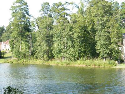 Aiken Residential Lots & Land For Sale: 141 Sea Grass