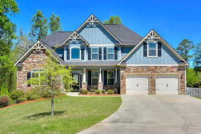 Aiken Single Family Home For Sale: 122 Bird In Hand Place