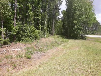 Residential Lots & Land For Sale: US Hwy 301