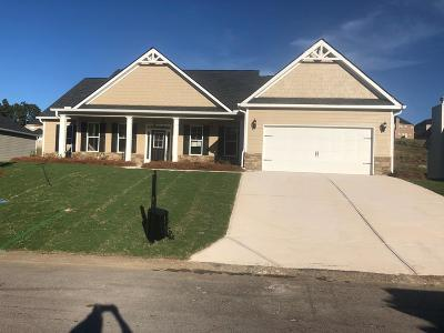 Aiken Single Family Home For Sale: 341 Equinox Loop