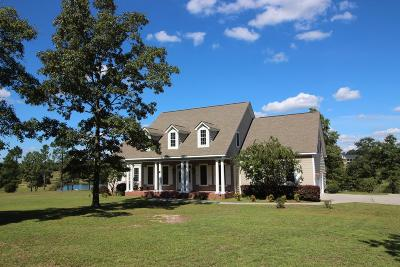 Warrenville Single Family Home For Sale: 732 Blue Roan Court