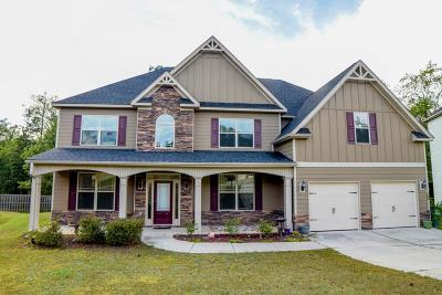 Aiken Single Family Home For Sale: 115 Bird In Hand Place