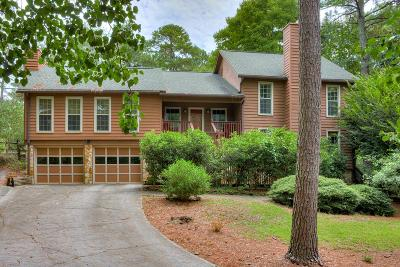 Aiken Single Family Home For Sale: 3987 Wood Valley Drive