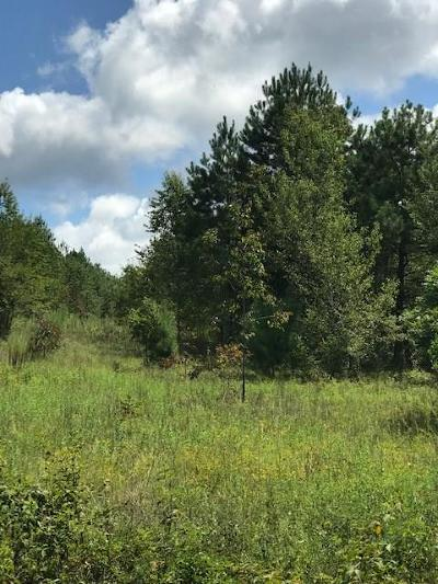 Aiken Residential Lots & Land For Sale: 544 Main Drive