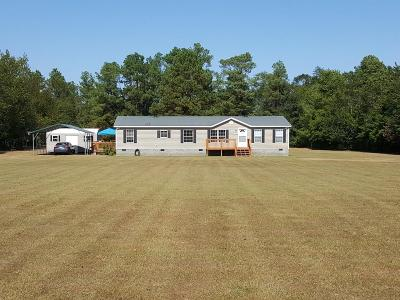 Aiken Single Family Home For Sale: 319 Wheat Road