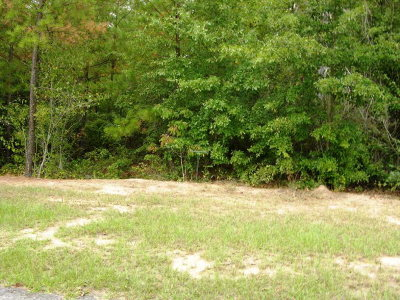 Aiken County Residential Lots & Land For Sale: Lot 25 Eve Street
