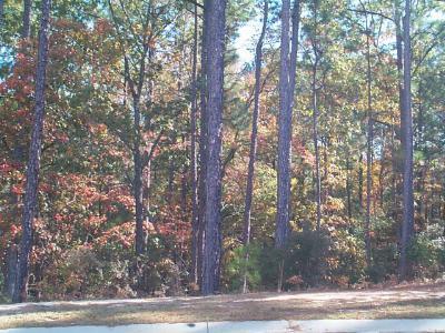Aiken Residential Lots & Land For Sale: 000 White Birch