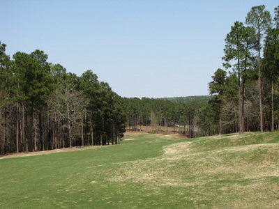 Aiken Residential Lots & Land For Sale: 1062 Earlmont Drive