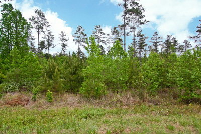 Edgefield County Residential Lots & Land For Sale: Lot 0 Sweetwater Road