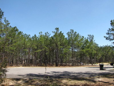 Aiken Residential Lots & Land For Sale: 401 Chamberley Place