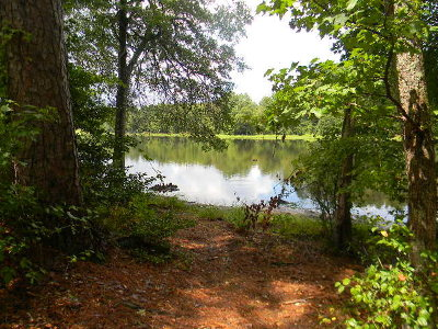 Edgefield County Residential Lots & Land For Sale: 00 Rabbit Trail