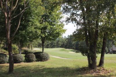 Aiken Residential Lots & Land For Sale: 157 Red Cedar Road