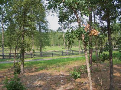Aiken Residential Lots & Land For Sale: 000 Solstice Meadow Lane