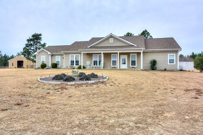 Aiken County Single Family Home For Sale: 176 Boggy Gut Road
