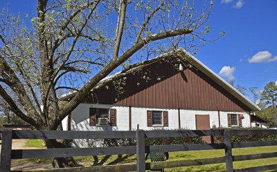 Aiken Single Family Home For Sale: 441 Orangeburg Street SE